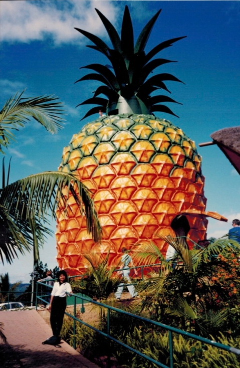 The Big Pineapple, Australia