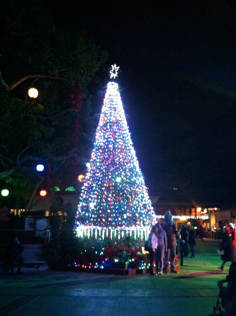 Christmas Tree at San Diego Zoo