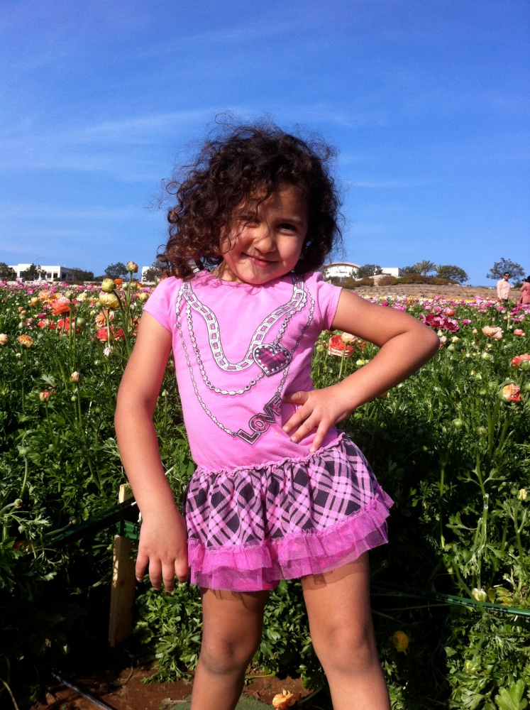 The Flower Fields Are Ablaze With The Beauty of Color - Carlsbad, CA (San Diego) (1/6)