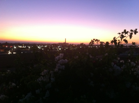 Carlsbad in the evening