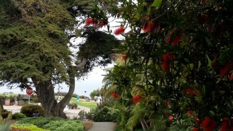 Seagrove Park, Del Mar