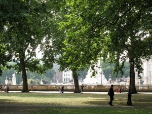 Green Park with a view of Buckingham Palace