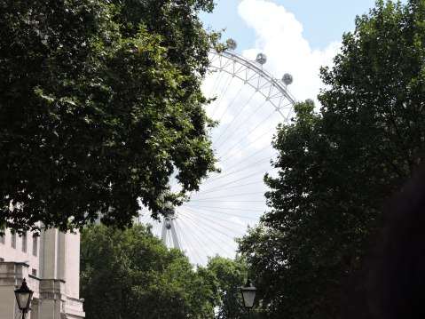 London Eye from near Downing Street