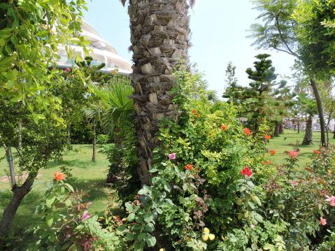 The Delphin Imperial, Antalya