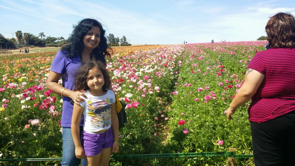 The Flower Fields Are Blooming Beautiful! (3/6)