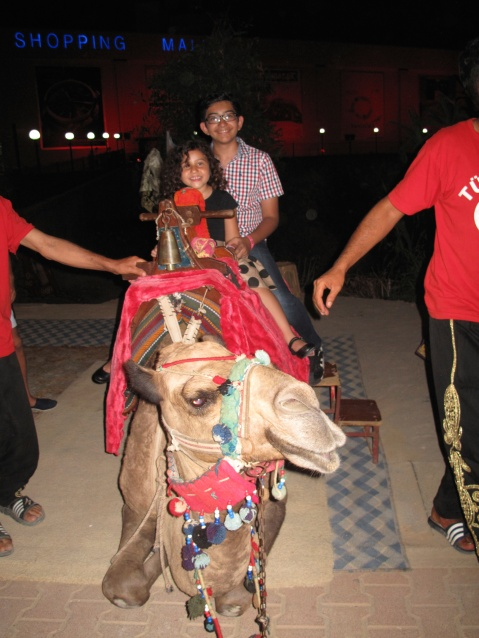 Walking Distance near Delphin Imperial, Lara- camel time!